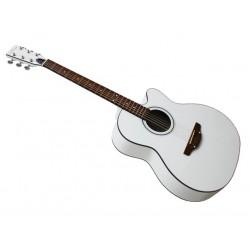 Гитара акустическая Leotone L-011