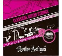 Medina Artigas Violeta 470