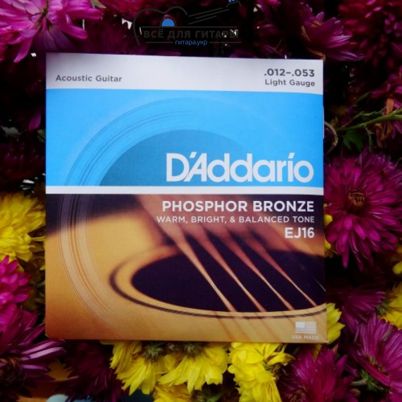 D'Addario EJ16 Phosphor Bronze Light