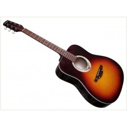 Гитара акустическая Trembita Eagle E-2